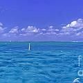 Florida Keys Marathon Intercoastal Waterway 3 by David Zanzinger