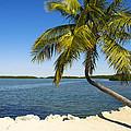Florida Keys by Raul Rodriguez