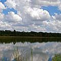 Florida Lake 1 by Nancy L Marshall