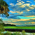 Florida Landscape With Palms by Kenny Francis