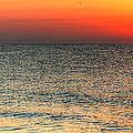 Florida Point Sunrise by Michael Thomas