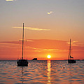 Florida Sailboat Sunset by Bill Cannon