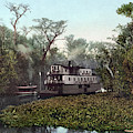 Florida Steamboat, C1902 by Granger