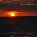 Florida Sunset by Debbi Granruth