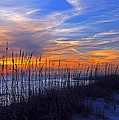 Florida Sunset by Stefan Eberhard