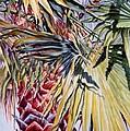 Florida's Pride by Roxanne Tobaison