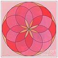 Flower 126 by Lawrence Nusbaum