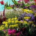 Flower Arrangement by Bruce Nutting