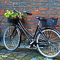 Flower Basket Bicycle by Catherine Sherman