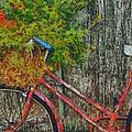 Flower Basket On A Bike by Mark Kiver