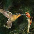 Flower Bird by Yury Malkov