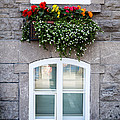 Flower Box Old Quebec City by Edward Fielding
