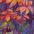 Flower Burst by Kendall Kessler
