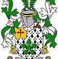Flower Coat Of Arms Irish by Heraldry
