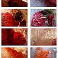 Flower Collage Vertical by Randi Grace Nilsberg
