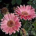 Flower Duvet Cover by Skip Willits