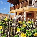 Flower Fence For A Beach Loft In Jeri by Karen Maxwell