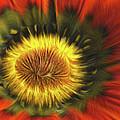 Flower Fractal by Angela Stanton