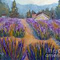 Flower Garden by Carolyn Jarvis