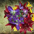 Flower - Garden Joy - Luther Fine Art by Luther Fine Art