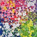 Flower Garden by Kathern Welsh