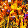 Flower - Iris - Orchestra by Mike Savad