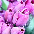 Flower Mart by Rosemary Bliss