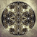 Flower Of Life Silver by Filippo B
