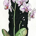 Flower Orchid 02 Elena Yakubovich by Elena Yakubovich