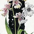 Flower Orchid 06 Elena Yakubovich by Elena Yakubovich