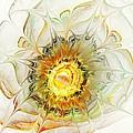 Flower Palette by Anastasiya Malakhova