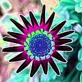 Flower Power 1448 by Pamela Critchlow