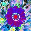 Flower Power 1458 by Pamela Critchlow