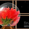 Flower Snow Globe At Window by Claudia Ellis