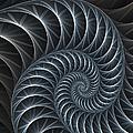 Flower Spiral by Gabiw Art