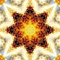 Flower Stars by Derek Gedney