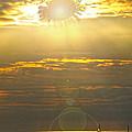 Flower Sun by David Arment