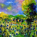Flowered Village by Pol Ledent