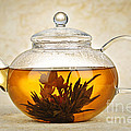 Flowering Blooming Tea by Elena Elisseeva