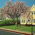 Flowering Crab Apple Tree by Dan Shefchik