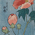 Flowering Poppies Tanzaku by Ando Hiroshige