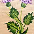 Flowering Thistle by Barbara Griffin