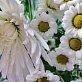 Flowering Together by Lisa Byrne