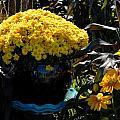 Flowers 537 by Joyce StJames