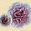 Flowers 7993 by Walt Foegelle