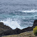 Flowers And Crashing Waves by Bruce Gourley