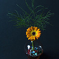 Flowers And Greenery 3 by John Hebb