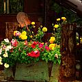 Flowers And Shovel On An Old Drill Truck by Lanita Williams