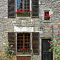 Flowers And Windows by Dave Mills
