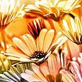 Flowers Artwork by Lutz Baar